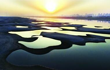 难得一见!汉江水位下降武汉市民冬日沙洲寻野趣