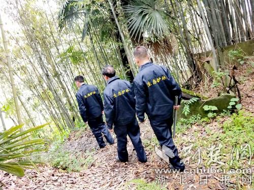 """竹山县1540名生态护林员""""着装上岗"""""""