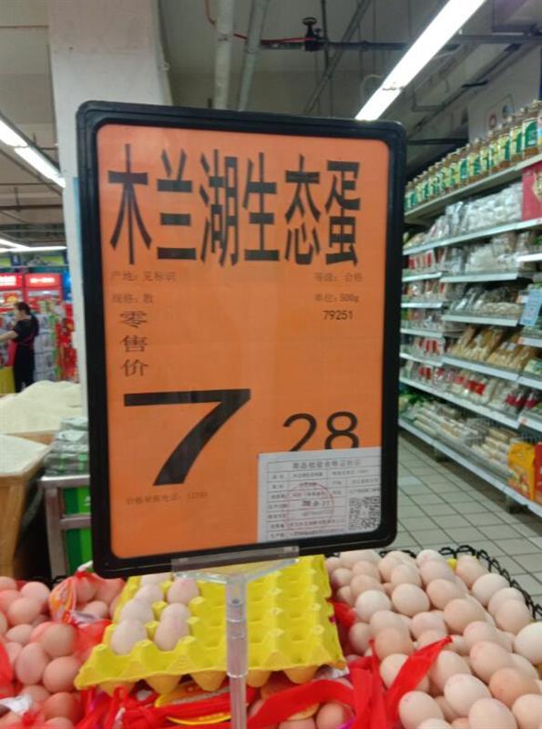 """同为鸡蛋,为何待遇不同?记者调查:追问真假""""土鸡蛋"""""""