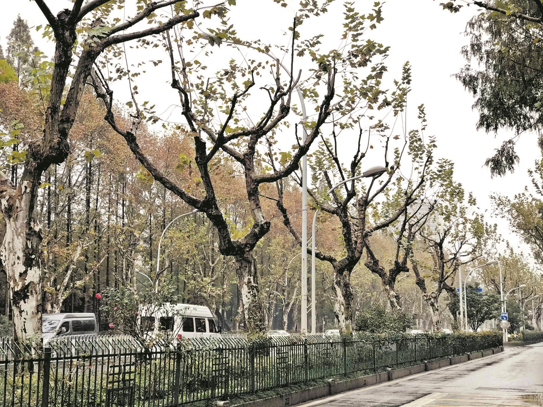 /shishangquan/2403636.html