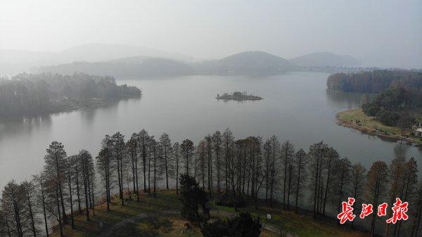 武汉东湖晨雾袅袅,