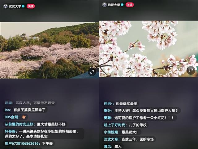 武大抗疫医护人员赏樱专场抖音话题播放量超1.7亿次