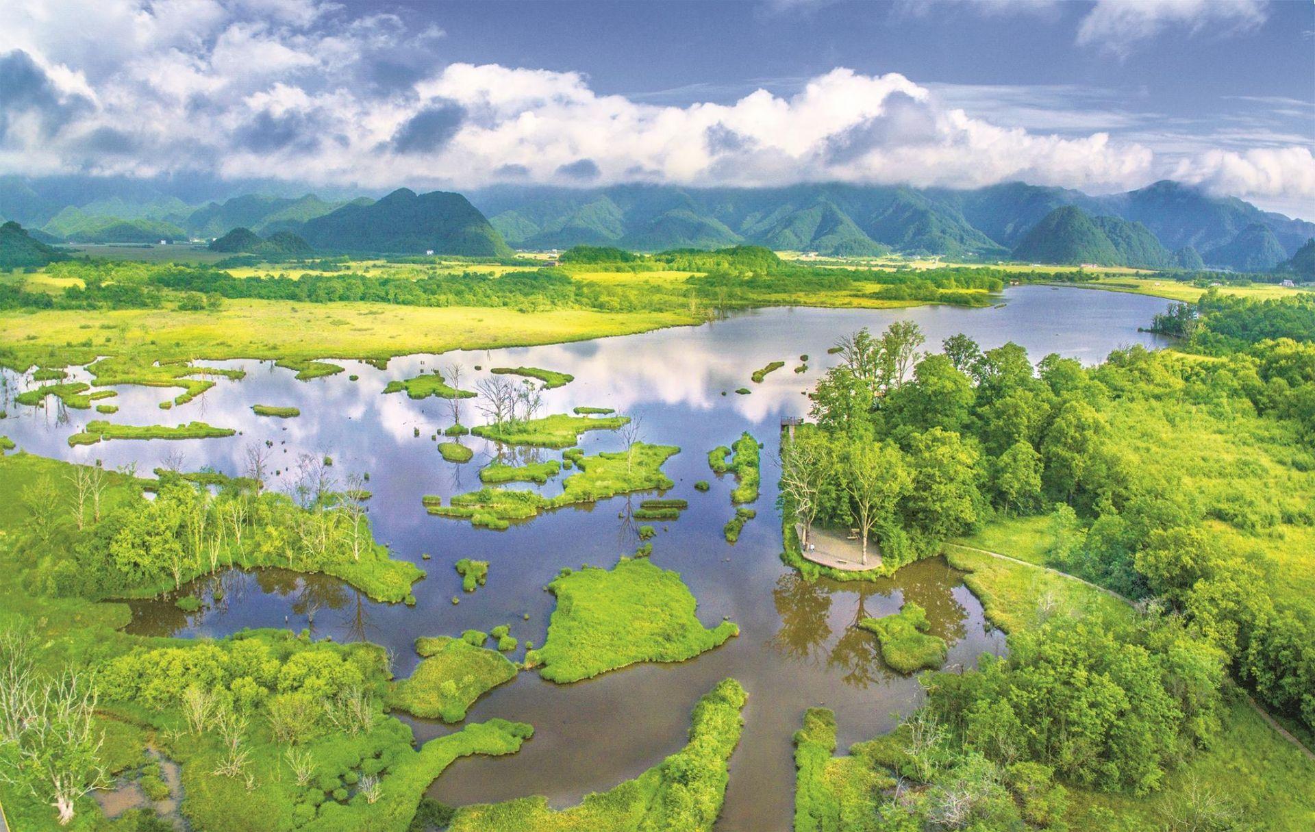神农架国家公园:奏响生态优先绿色发展最强音-荆楚网-湖北日报网