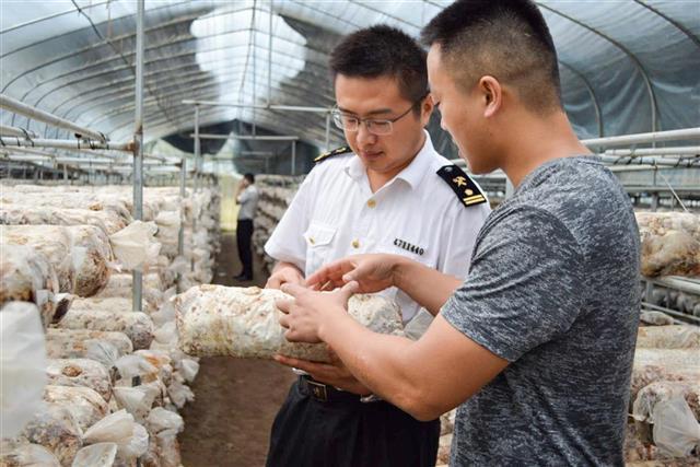 1-8月湖北省外贸进出口总值同比增长35.3%