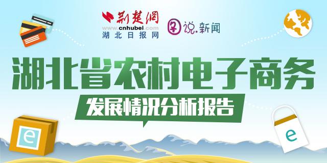 一图了解:湖北省农村电商发展报告
