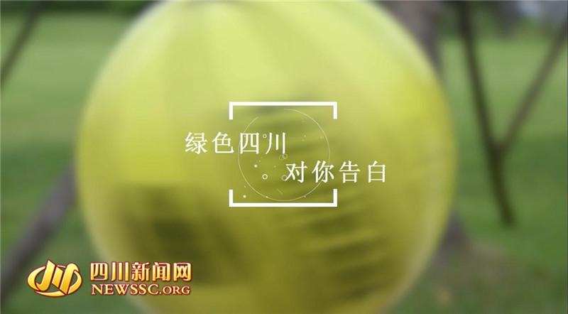 四川新闻网成都9月20日讯(记者 刘佩佩)办公区内,绿色也会在,随手关灯,打印双面来,低碳环保SO EASY,昨(19)日,一首名为《绿色四川.对你告白》的MV,在各大视频网站一上线,就立即引起了网友的关注。这首根据周杰伦经典歌曲《告白气球》改编而成的MV,歌词改编得非常用心,配以熟悉的旋律,唱出了对绿色生活理念的积极响应。值得一提的是,除了歌词的表现力,这首MV拍得也十分酷炫,更邀来KHOT2016世界花式篮球挑战赛冠军团队的四位小鲜肉倾情出镜玩转花式篮球,寓意花式告白绿色四川。  记者注意到,