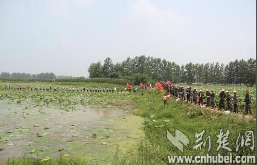 嘉鱼陆溪镇珍湖围堤出现管涌 民兵突击队奋战