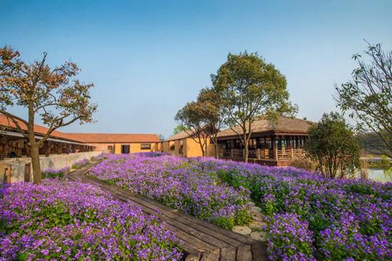娱乐互动相结合的大型园林旅游主题公园,园区有绵延数公里的紫薇路