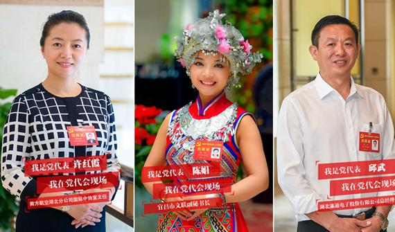湖北省第十一次党代会代表相册