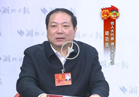 胡功民:潜江破题新旧动能转换