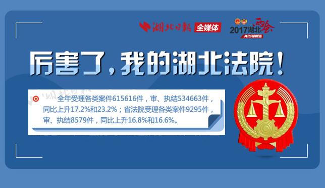 一图看懂湖北省高级人民法院工作报告