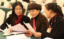 代表团分组审议