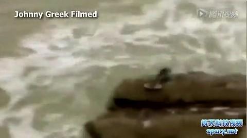游客拍下以色列美人鱼 类似生物趴在海边岩石上