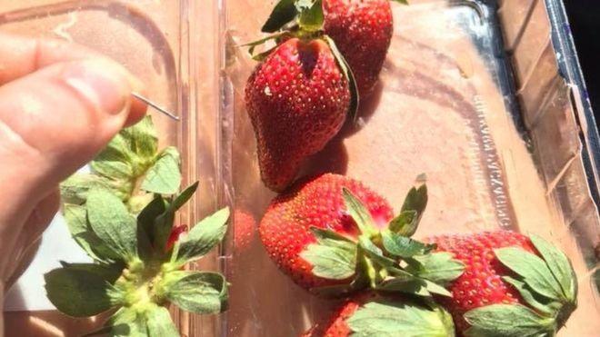 澳大利亚草莓藏针 引发社会恐慌 谁干的?怎么避免?