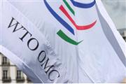 中国不遵守WTO规则?外交部回应