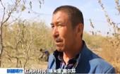 新疆喀什���w提�t光村:9��民族一家�H