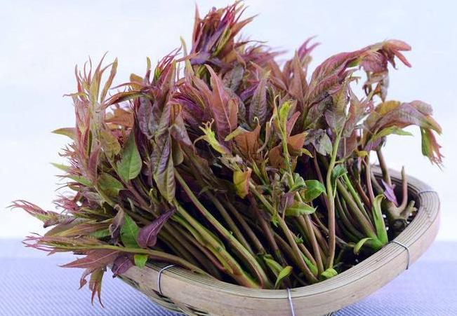 阳春三月野菜香!野菜扎堆上市成武汉市民餐桌新宠