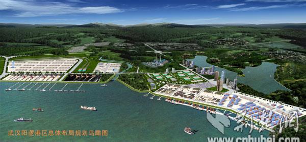 阳逻港边掀起头脑风暴 全省港航代表献智航运中心建设