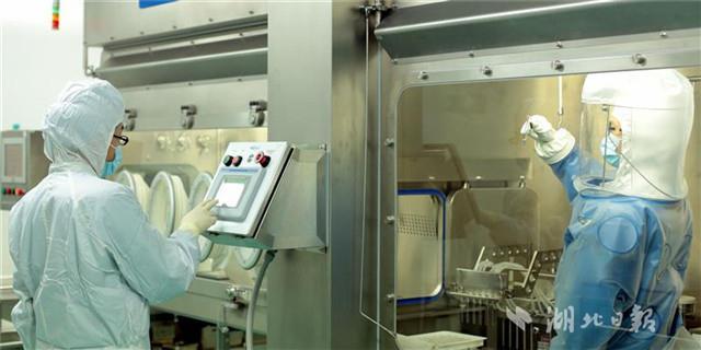 有望一针搞定宫颈癌!光谷这家公司获广谱宫颈癌疫苗全球独家专利