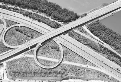 武汉40处立交桥及匝道 披绿 行车如在林中穿梭