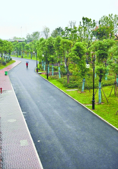 者昨日了解到,广大市民期待的环汉口绿道最后一段——二七长江大桥图片