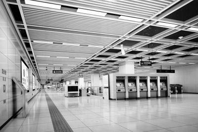 武汉地铁蔡甸线知音站主体结构完工 车站全长478.5米是标准站的2倍
