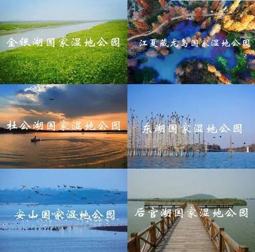 最强《武汉百科全书》!好吃的、好玩的、好看的统统都有