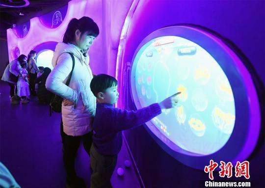 武汉新闻  武汉海昌海洋萌宠乐园近期开园迎客,汇聚全球水域30余品种