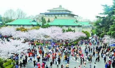 春意盎然樱花烂漫几多时 武汉27日最高气温或升至26℃