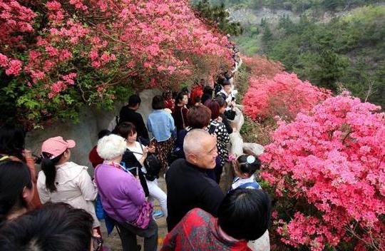 武汉两景区发红色预警:人太多了,请去其他景点
