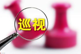 武汉巡察分批公布整改情况 首批5家单位亮出整改措施