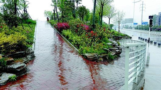 武汉海绵城市试点加快 未来15年内划171个海绵城市汇水分区