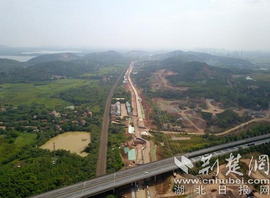 武汉森林大道项目召开誓师大会 年底实现全线贯通(图)