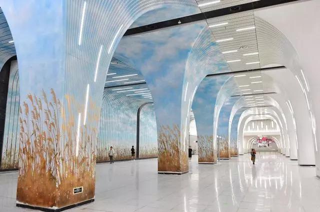 武汉首座4层地铁车站亮相,系3条线换乘站,金秋芦苇作背景
