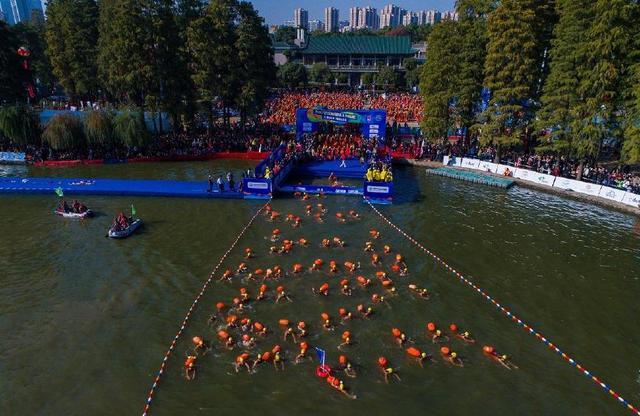 中外高手云集 本地泳友热盼 周六来东湖与水马一起狂欢