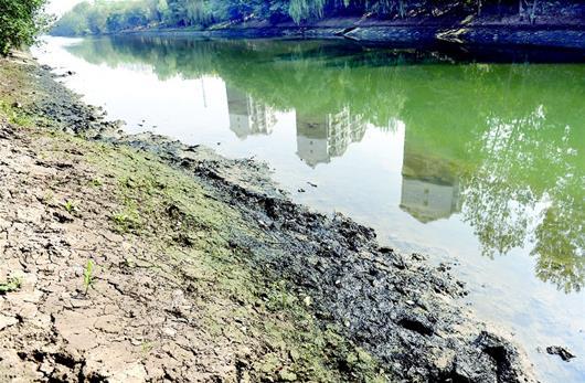 走近一看,河水呈墨绿色,河面上还有点点白色泡沫状漂浮物,河两岸长满