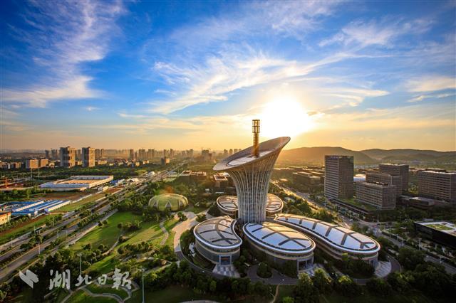 厉害了!武汉自贸片区光纤光缆国内市场占有率达66%