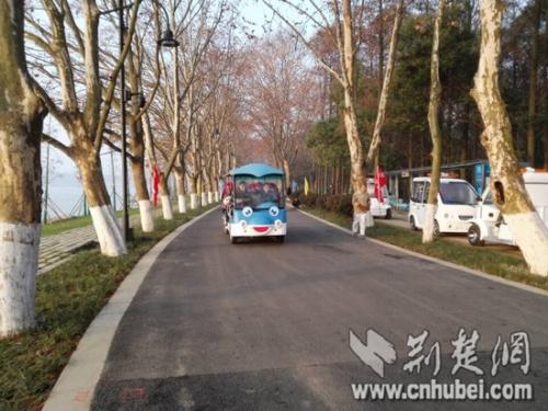 武汉长江左右岸将各现百公里滨江绿道 串起百里江滩公园
