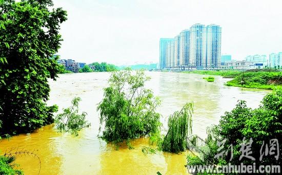 来凤县城内涝严重,宣恩县高罗乡麻阳寨小学380名师生被洪水围困,鹤峰