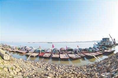 湖北83个水生生物保护区将逐步实施全面禁捕